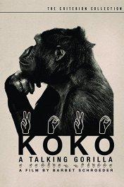 Коко, говорящая горилла / Koko, le gorille qui parle