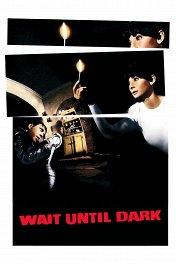 Дождись темноты / Wait Until Dark