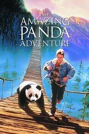 Удивительные приключения панды / The Amazing Panda Adventure