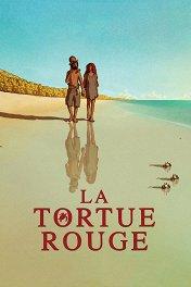 Красная черепаха / La tortue rouge