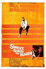 Сладкоголосая птица юности / Sweet Bird of Youth