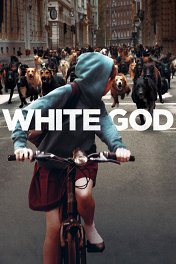 Белый бог / Fehér Isten