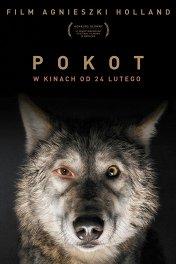 След зверя / Pokot