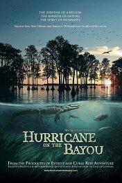 Ураган на Байу / Hurricane on the Bayou