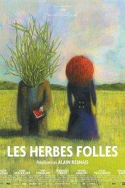 Дикие травы / Les herbes folles