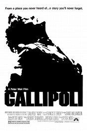 Галлиполи / Gallipoli
