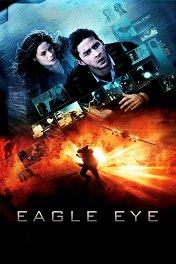 На крючке / Eagle Eye