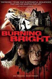 Во власти тигра / Burning Bright