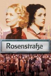 Розенштрассе / Rosenstrasse