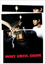Постер Дождись темноты