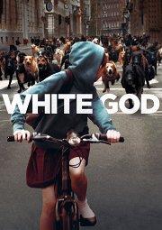 Постер Белый бог