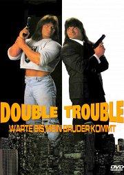 Постер Двойные неприятности