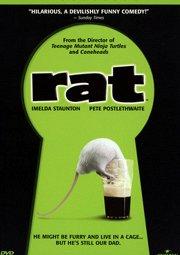 Постер Мистер Крыс