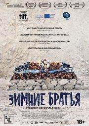Постер Зимние братья