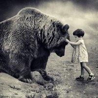Фото Медведь Медведев