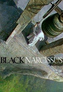 Черный нарцисс