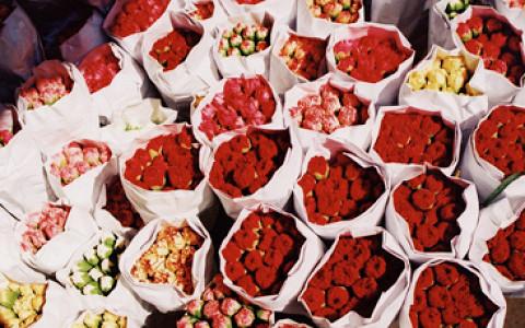 Торговый центр на Кутузовском, семьдесят цветочных ярмарок и другие городские новости