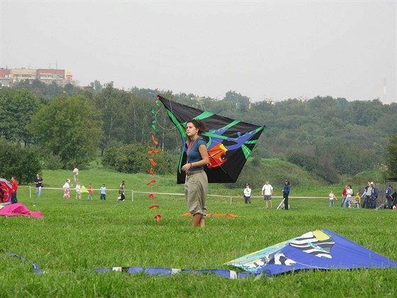 VIII Фестиваль воздушных змеев «Пестрое небо»