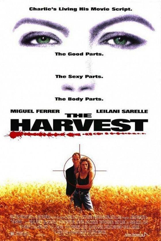 Капкан для гринго (The Harvest)