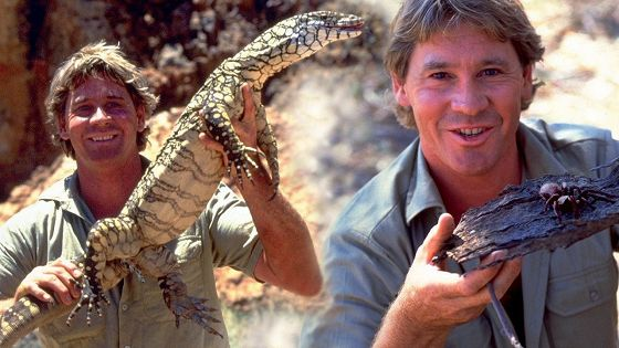 Охотник на крокодилов. Схватка (The Crocodile Hunter: Collision Course)
