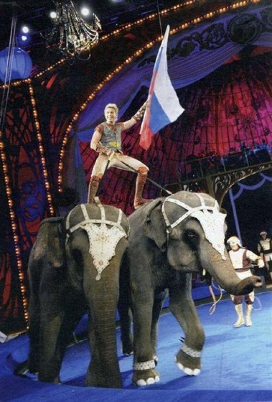 Карнавал слонов
