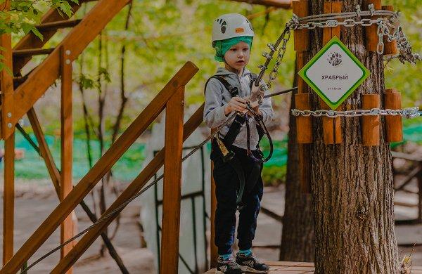 Троллей, бочки и вертикальная сеть: 7 лучших веревочных парков в Москве