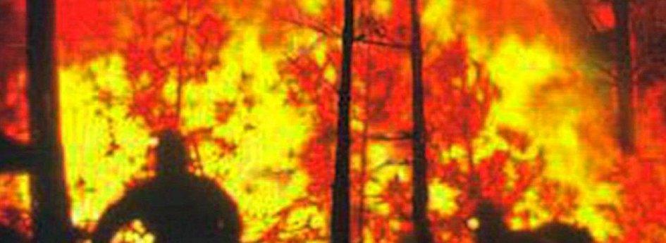 Кино: «Покорители огня»