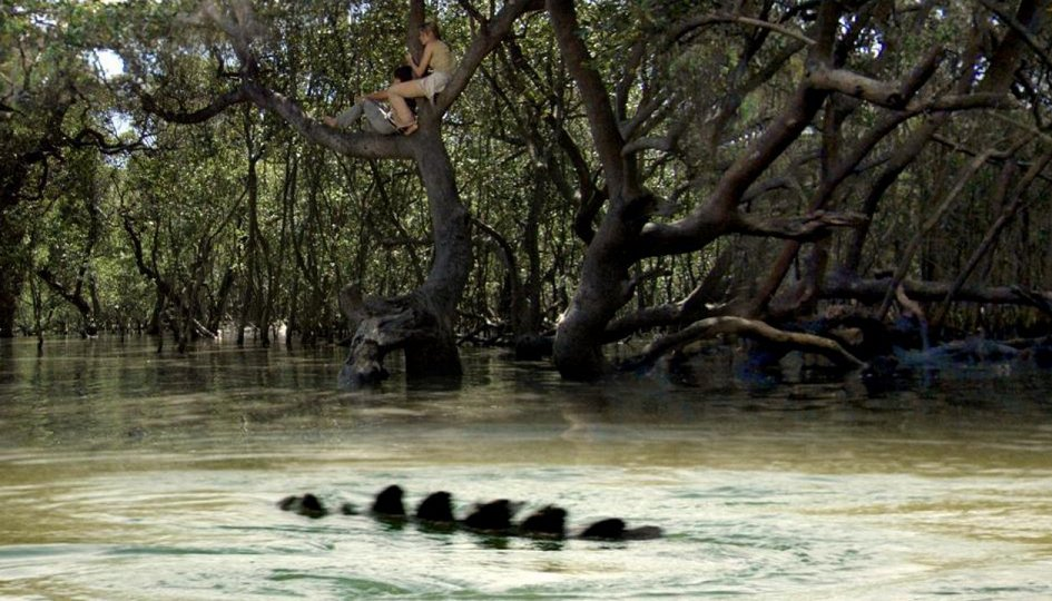 Кино: «Хищные воды»