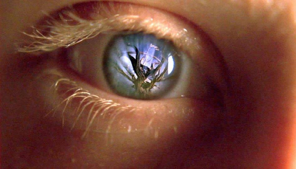 Кино: «Последнее пророчество»