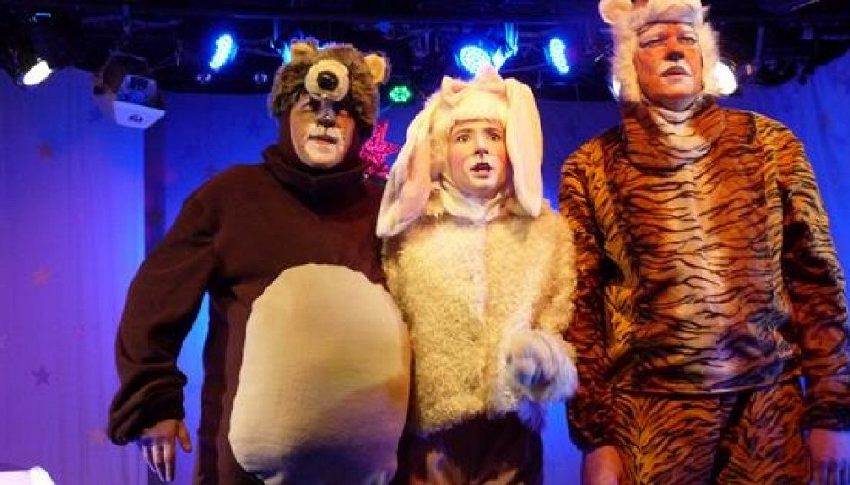 Театр: Волшебная ночь, или Когда оживают игрушки