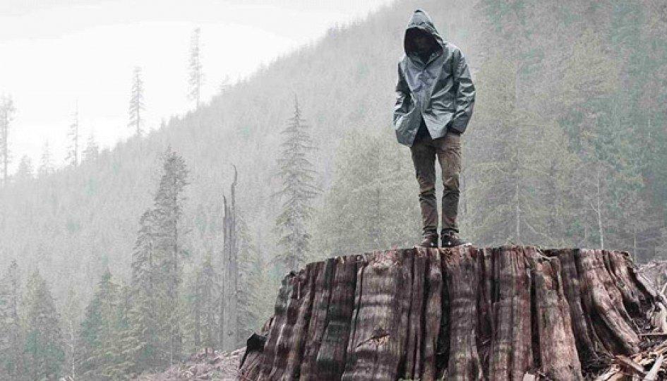 Кино: «Когда дерево падает: История Фронта освобождения Земли»