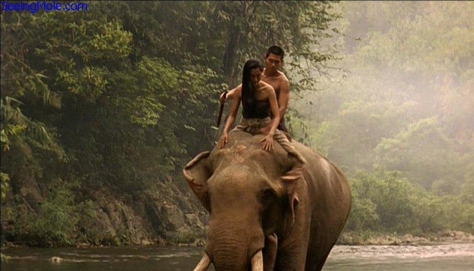 Кино: «Легенда о тигрице»