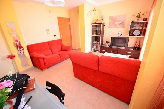 Недвижимость в Торревьеха Испания, дома и квартиры в