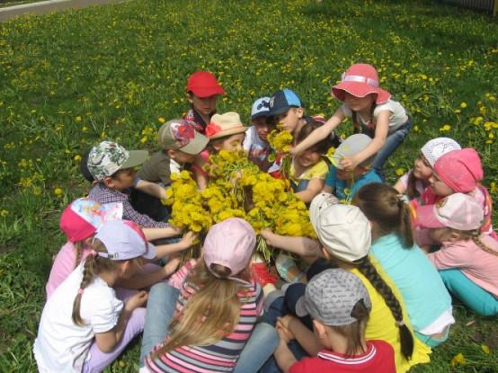 Видео - сайт музыкального руководителя детского сада