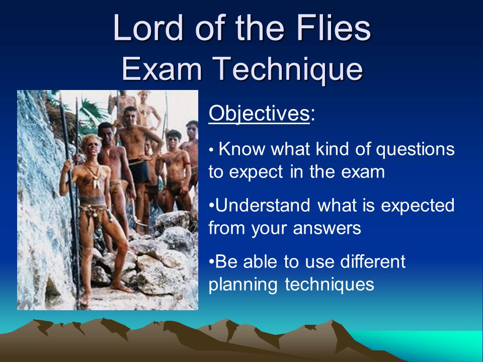 Write my lord of the flies research paper