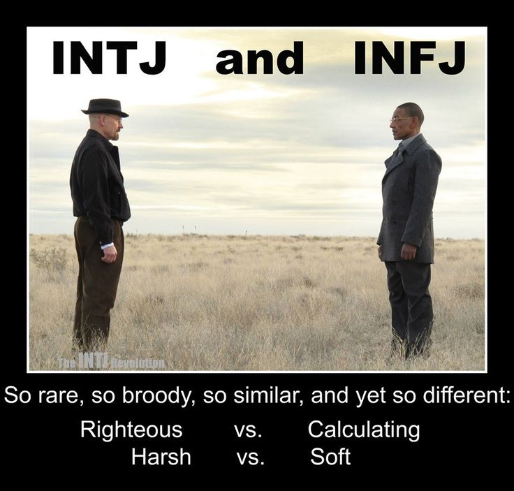 Dating intj man