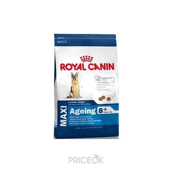Владивосток корм royal canin