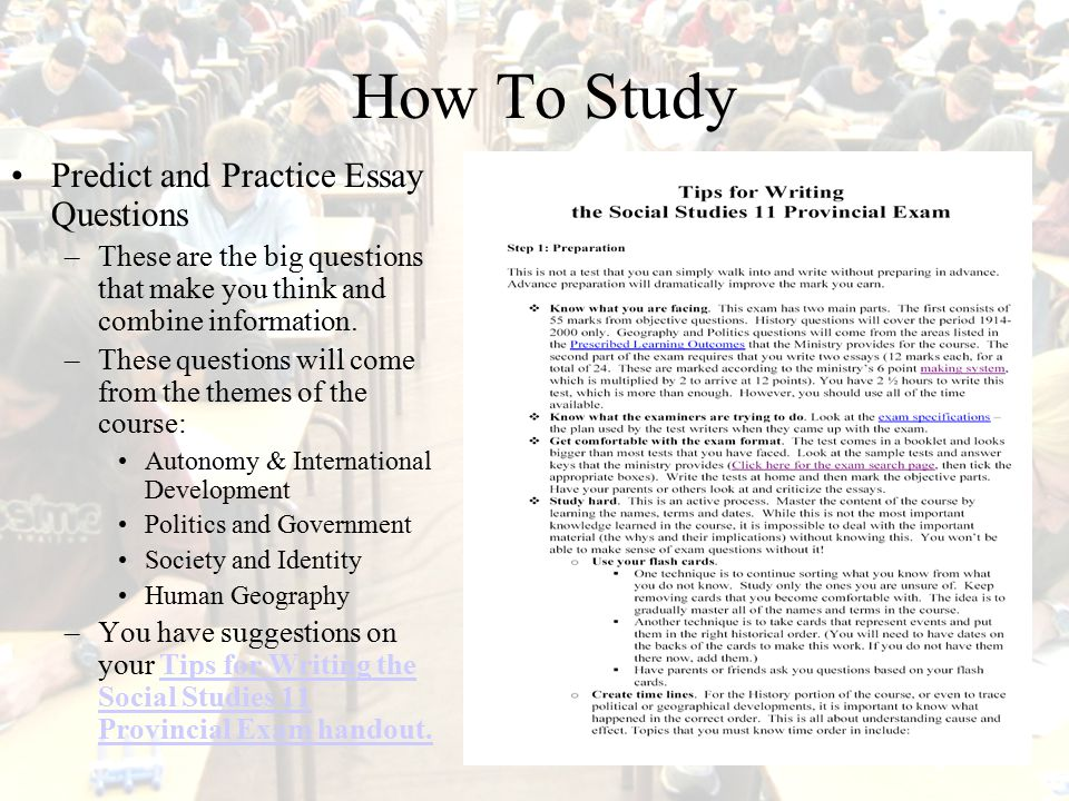 Case Study: Healing and Autonomy - Assignment Essays