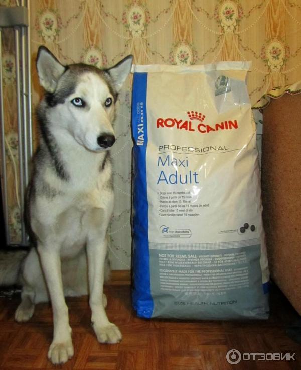 Корм royal canin maxi professional