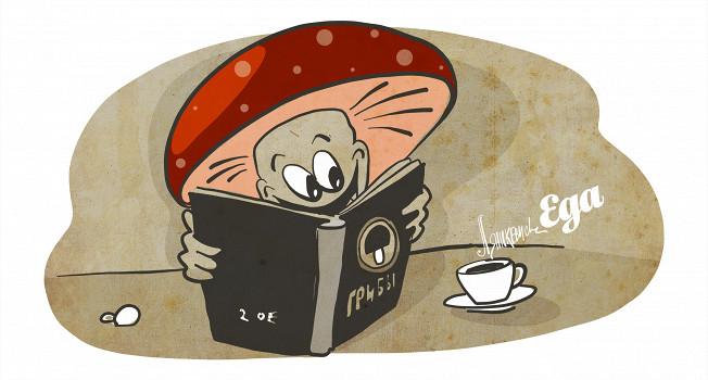 Что такое грибы и как их собирать, готовить и хранить