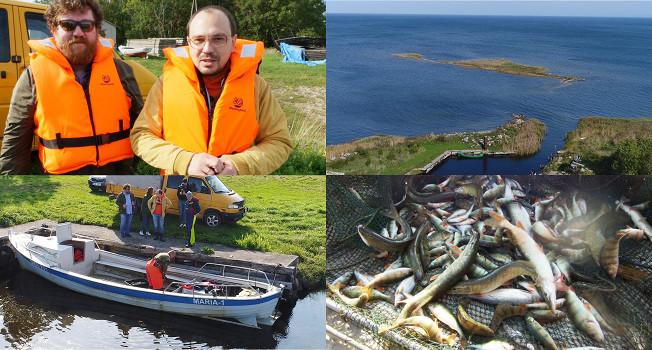 Как ловят рыбу в Балтийском море