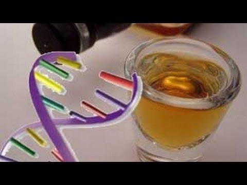 Как бороться с генетическим алкоголизмом