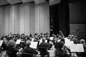 Аб.8 Звезды мировой оперы