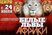 Белые львы Африки