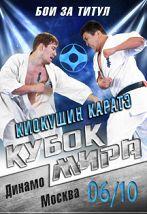 Кубок мира по киокушин каратэ